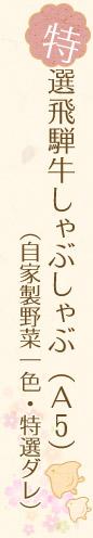 特選飛騨牛しゃぶしゃぶ(A5) (自家製野菜一色・特選ダレ)